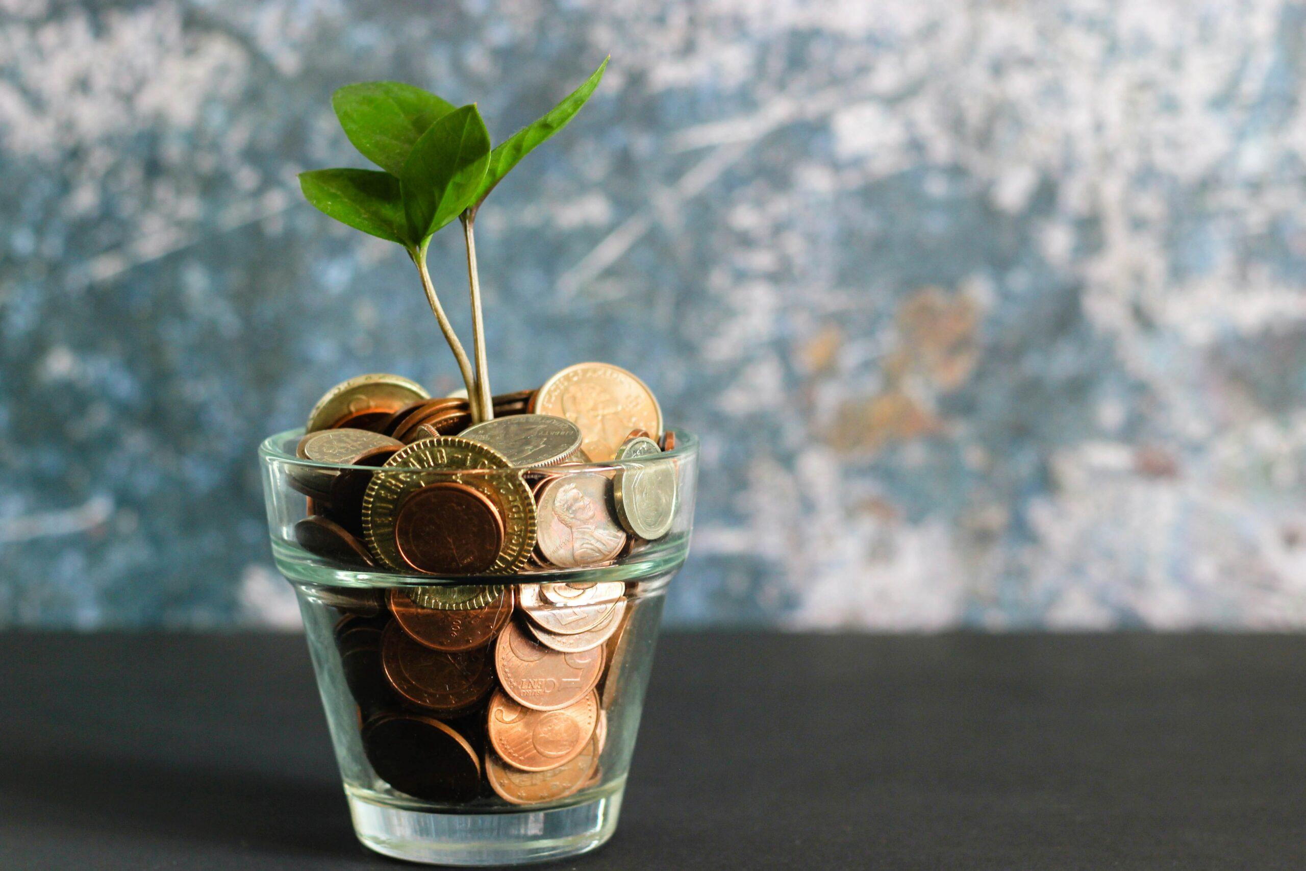 Expérimentations et usages autour du financement participatif